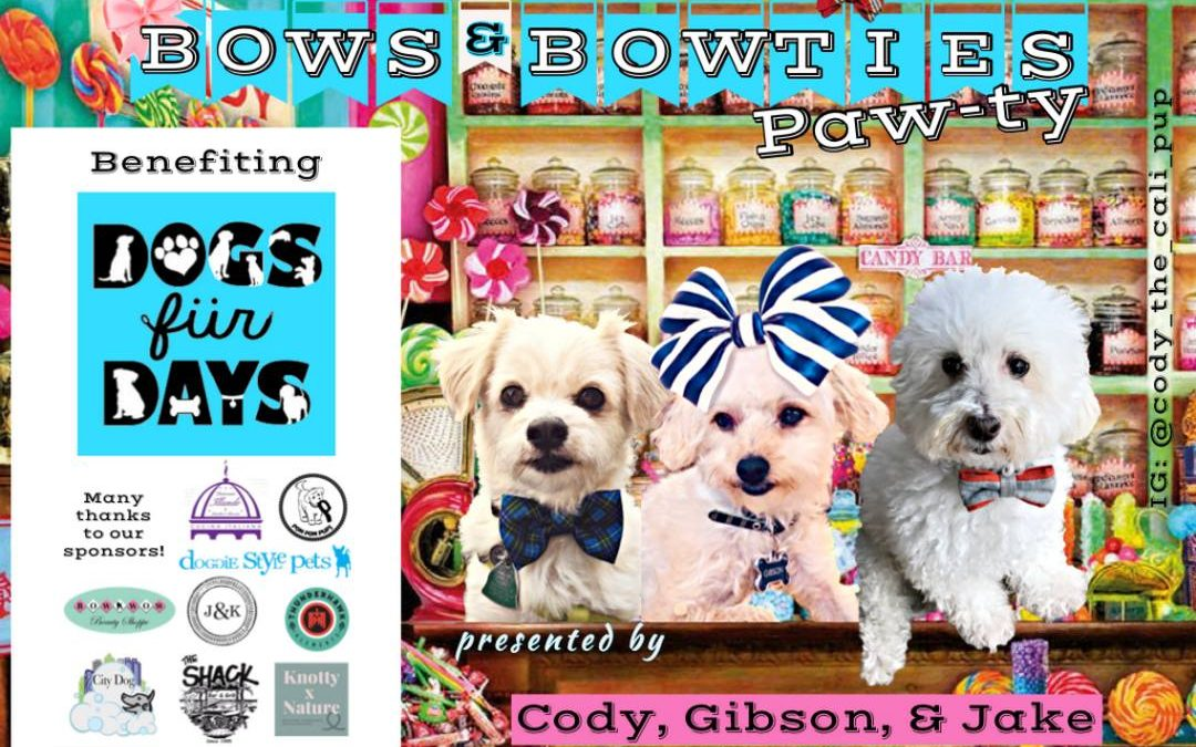 Bows & Bowties Paw-ty!